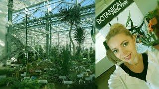 DSM: Ryga su Loreal Botanicals ir kovinė Vikė