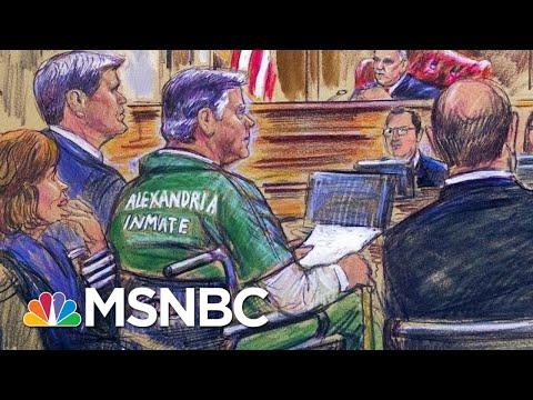 Manafort Gives Statement At Sentencing: 'I Am Sorry For What I Have Done' | Hallie Jackson | MSNBC