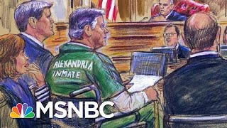 Manafort Gives Statement At Sentencing I Am Sorry For What I Have Done Hallie Jackson MSNBC