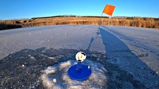 ВПЕРВЫЕ ТАКОЕ ВИЖУ Рыбалка на щуку Зима 2020 2021