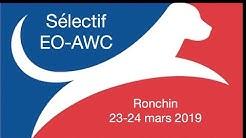 Sélectif EO-AWC 2019-2-Ronchin (samedi)