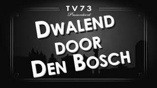 dwalend door Den Bosch | Grasso Den Bosch
