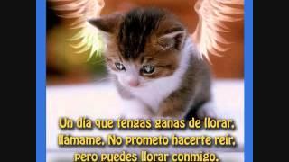 """""""LEJOS DE TI"""" LOS ASKIS,25/03/13"""