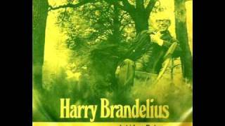 Harry Brandelius - Jul i Las Palmas