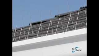 Bird Barrier Gutter-Point Introduction