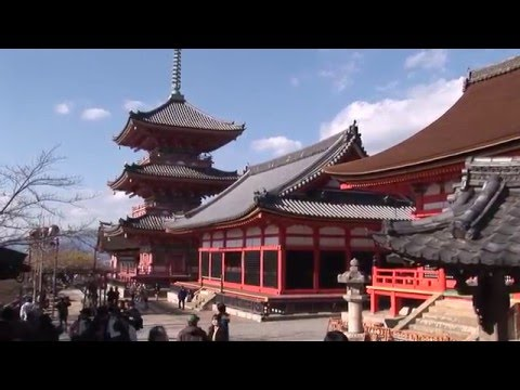 Kiyomizu-dera temple and gardens, Kyoto, Japan travel video