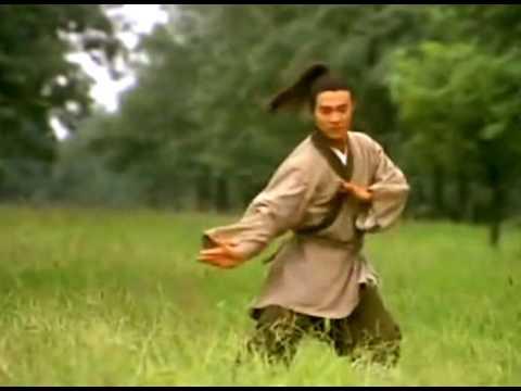 Training Scene Twin Warriors Jet Li Tai-Chi