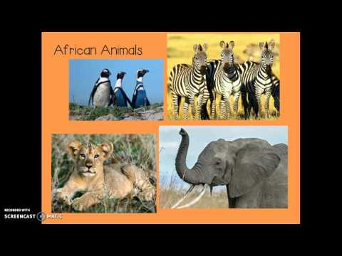 Virtual Field Trip to Africa