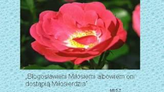 Pieśń o św. Antonim:-śpiew,słowa,melodia: Izela Plewik, aranżacja: Pani Eryka