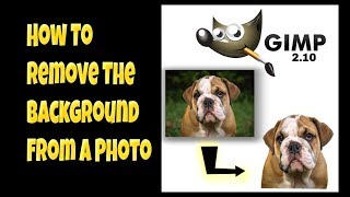 Remove A Background From A Photo In Gimp 2.10