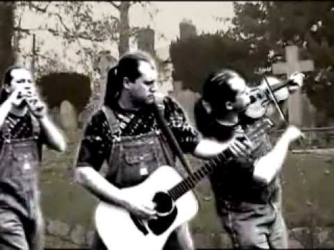 Hayseed Dixie Walk This Way