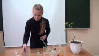 Опыт по фотосинтезу