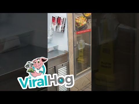 Rodent Leaping Into Deep Fryer At Whataburger