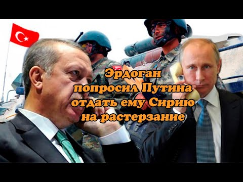 Эрдоган попросил Путина отдать ему Сирию на растерзание
