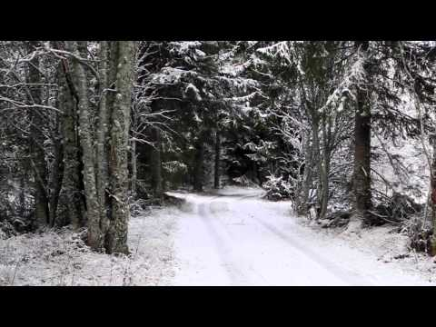Nikon Coolpix P7000 video test - Finnish countryside in winter (HD)