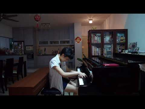 Hedwig's Theme - Jarrod Radnich by Maxy Chan (from Harry Potter and the Sorcerer's Stone)