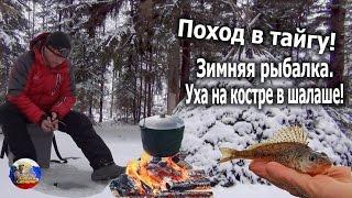 Поход в тайгу! Зимняя рыбалка!Уха на костре в шалаше!(Выходной день я отправился на лыжах в тайгу! Посетил свой шалаш и посветил это снежное утро зимней рыбалке..., 2016-11-13T16:36:29.000Z)