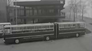 Autobusy Ikarus (1977)