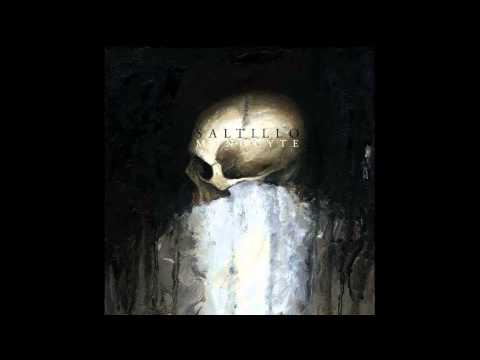 Saltillo - Monocyte (Full Album)