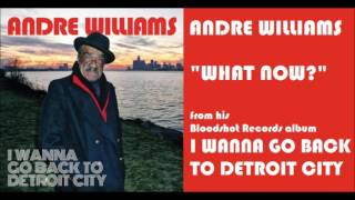 Andre Williams - What Now?