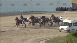 Vidéo de la course PMU CRITÈRIUM DELS 5 ANYS
