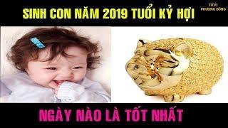 Sinh Con Năm 2019 Tuổi Kỷ Hợi Ngày Nào Là Tốt Nhất