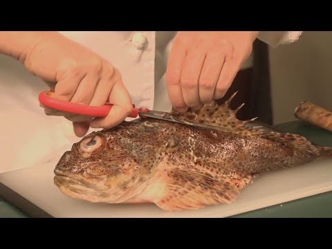How To Cook Sculpin