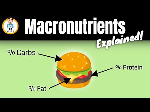 Learn the Macronutrients | Carbohydrates, Fat & Protein