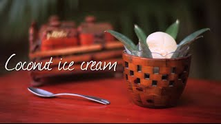 Coconut Ice Cream - Homemade Ice Cream Recipe Video
