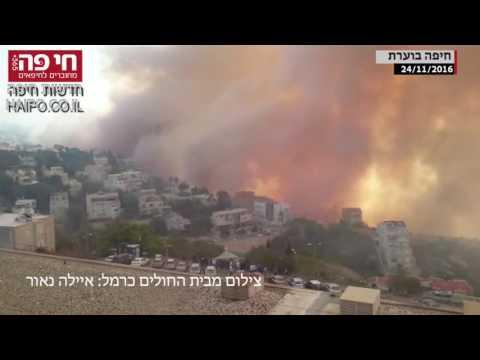 חי פה - חדשות חיפה - חיפה בוערת   וידאו   24 11 2016 15 30