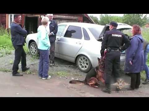 МВД России об убийстве людей в Кушве - июль 2017 год