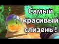 Скачать игру про муравьев empires of the undergrowth