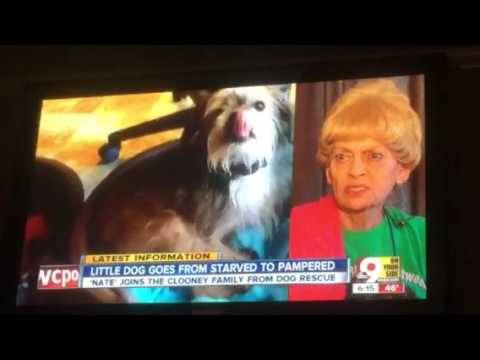 Eric Andre Show Celebrity Eats Dog Food