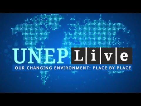 United Nations Environment Program
