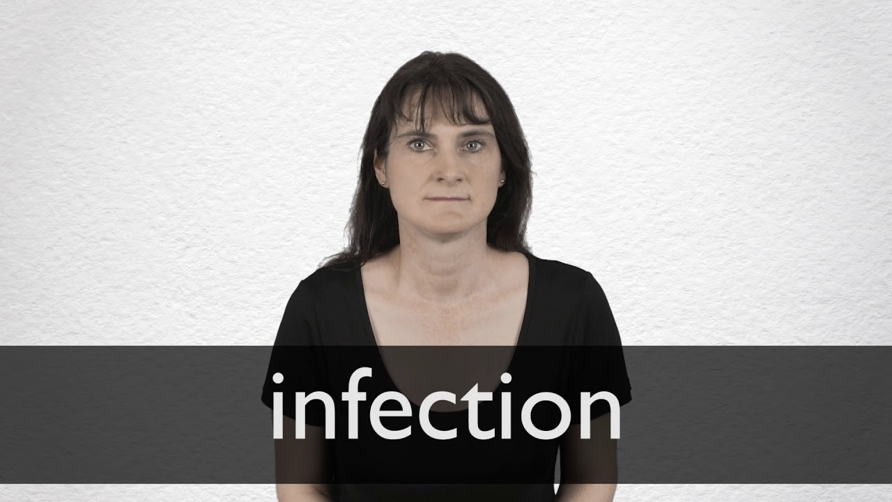 Infection definition and meaning   Collins English Dictionary