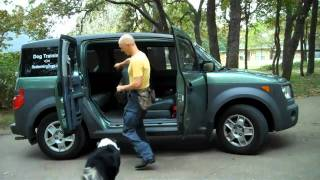 Teach Your Dog To Jump Into The Car | Redeeming Dogs | Tod Mcvicker Dallas Dog Training