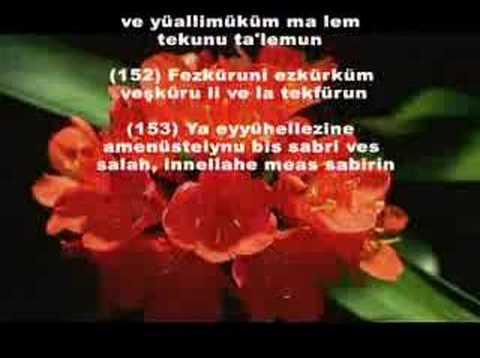 Bakara 146-153