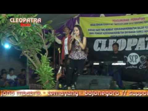 016 cleopatra