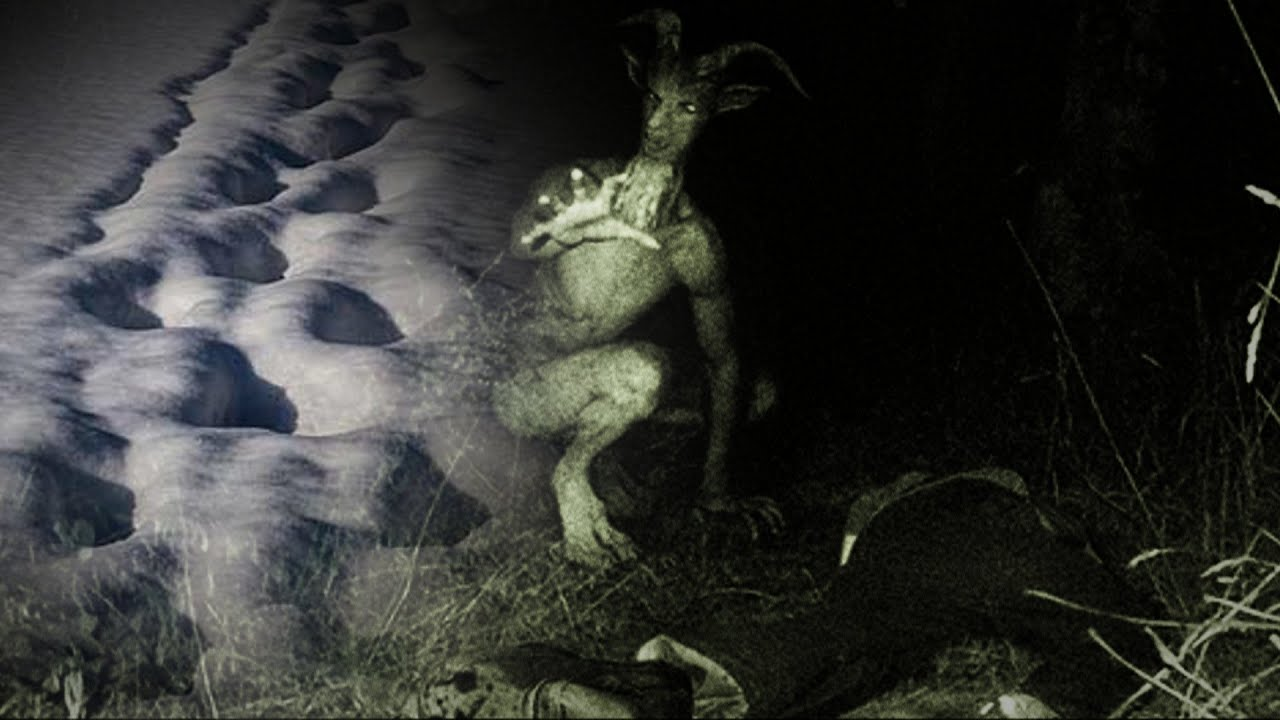 Las misteriosas huellas de la criatura de devonshire las for Jardines del diablo