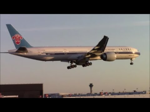 A Beautiful Fall Evening at Toronto Pearson Airport: RWY 23 Landings and Takeoffs