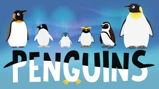 Penguins for Kids: Interesting Facts - Different Types of Penguins for Children