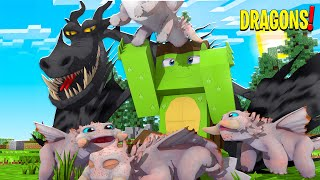 WE SAVED THE 4 BEWILDERBEAST EGGS! Minecraft Dragons