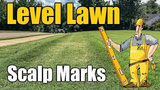 Leveling Lawns and Yards Prevent Scalp Marks