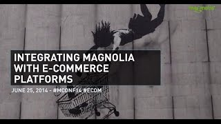 Integrating Magnolia With E-Commerce Platforms: Patterns, Strategies, Pitfalls