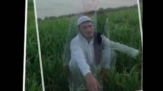 Video Pashto naat Gul khuban download MP3, 3GP, MP4, WEBM, AVI, FLV Juli 2018