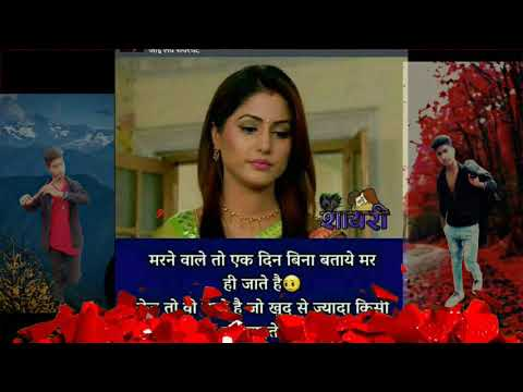 Hindi Sayri Song Rimex