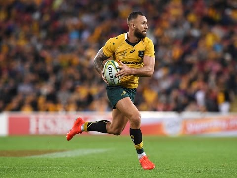 ● Top 5 ● Rugby Steppers