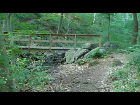 Ridley Creek State Park White Trail - PA