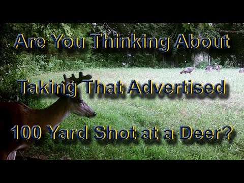 Are You Thinking 100 Yard Shot?