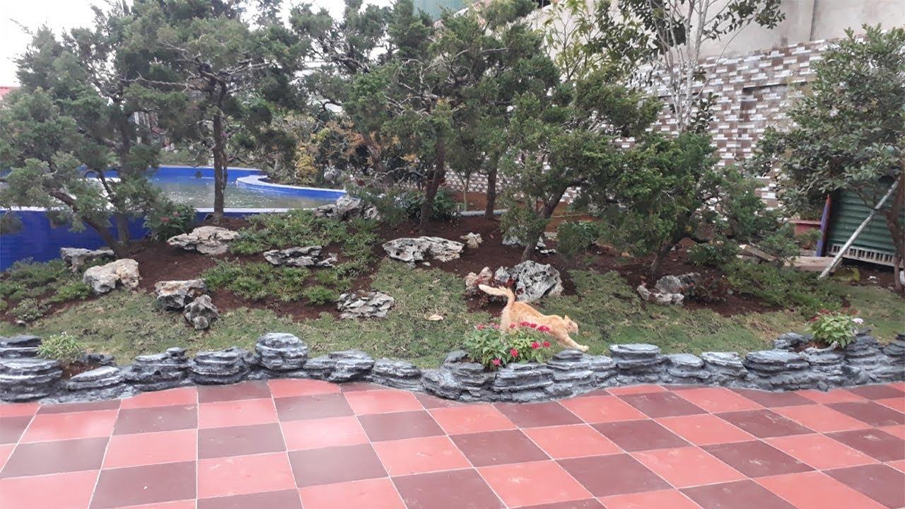Garden Landscape Ideas With Rocks